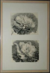 Bo Kass: Dahlias - SIGNED original Silver Gelatin photographs, Framed