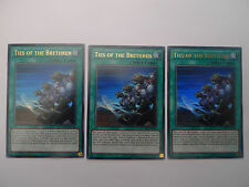 Ties Of The Brethren x 3 * Ultra Rare LDK2 Playset * Yu-gi-oh
