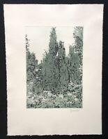Herbert Grunwaldt, Wacholder auf Bornholm, Farbradierung, 1979, handsigniert