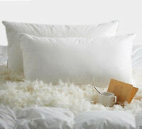 NEW 2PC EGYPTIAN COTTON COVER BED SLEEPING PILLOW FEATHER DOWN BLEND 2 SIZES