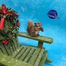 OOAK Squirrel 1:12 Dollhouse Miniature Realistic Handsculpted ~IGMA ARTISAN~ cat