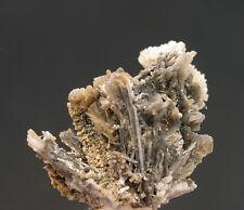 5432 Elpidit  UV usw Mt Saint Hilaire Kanada classic 1998 specimen Stufe