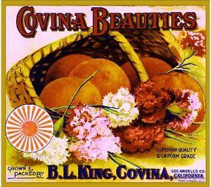 Covina Beauties Pink Carnation Flowers Orange Citrus Fruit Crate Label Art Print
