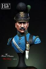 Heroes & Villains Bavarian Infantryman Minibust 1/16th Unpainted resin kit