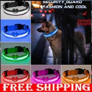 CLEO SHOP NEW PREMIUM GLOW-IN-THE-DARK LED SAFETY COLLAR