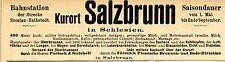 Kurort BAD SALZBRUNN in Schlesien Historische Reklame von 1895