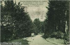 GAMBARIE S. STEFANO ASPROMONTE (RC) 3, FAGGETA TRA CAMPO TRE AIE, AUTO, 1935   m