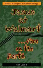 Jesus at Walmart : Fire on the Earth by Rick Leland (2013, Paperback)