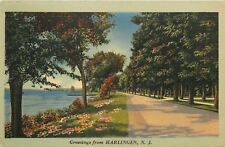 Harlingen New Jersey~Lakeside Waterfront Drive~Flowers on Bank~1940s Linen PC