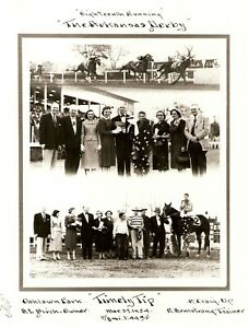 "1954 - Arkansas Derby Winner - TIMELY TIP - 3 Photo Composite - 8"" x 10"""