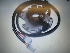 Suzuki RM250 (98-01) Ignition Stator