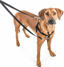 "2 Hounds Design Freedom No-Pull Dog Harness Training Package Large, 1"" Red"