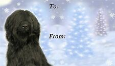 Briard Christmas Labels by Starprint - No 2
