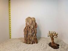 7.00 lbs Ohko Dragon Stone Aquascape ADA Aquarium WYSIWYG