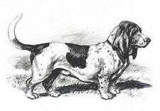 Basset Hound - Dog Art Print - Megargee MATTED