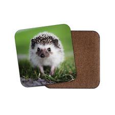 Cute Hedgehog Coaster - English Countryside Animal Adorable Wildlife Gift #16335