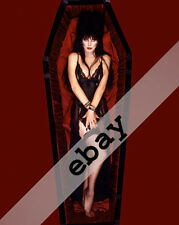 ELVIRA Mistress of Dark Cassandra Peterson in coffin stockings 8X10 PHOTO #1829