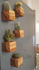 PORTA VASO / PORTA OGGETTI in legno di ulivo - magnetico - calamita - cactus -