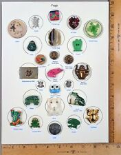 Card of 25 Antique BUTTONS: FROGS & TOADS, Various Materials / Ages