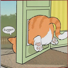 Funny humour birthday greeting card fat ginger cat flap bugger