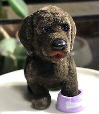 Puppy in My Pocket Series 8: Newfoundland, Angus