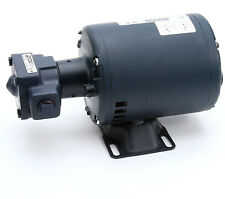 Anets Filter Pump/Motor Assembly,1/3Hp,115/230V Replacement Part#60161101