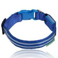 LED Dog Collar USB Rechargeable Makes Your Dog Visible Safe & Seen Blue Large L