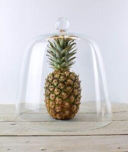Handmade Clear Circular Cake Glass Dome Display Cloche Bell Jar 31 cm