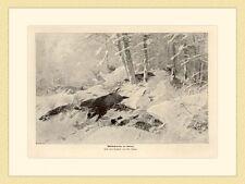 Wildschweine im Schnee Keiler Gemälde von Chr. Kröner HOLZSTICH II 635