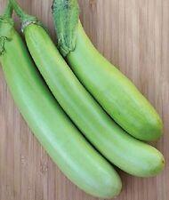 25 LOUISIANA LONG GREEN EGGPLANT Solanum Melongena Fruit Vegetable Seeds *CombSH