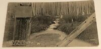 Vtg Postcard Of The Great Divide Stream Flowing Into Atlantic & Pacific Ocean