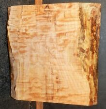 Quilted Maple Wood 10738 Bowl Turning Blank Lathe Lumber 12 x 12.5 x 4.25