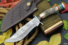 Custom Damascus Steel Hunting Knife Handmade With Stag Horn Handle (Z197)