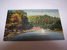 Irving Cliff and Park Lack, Honesdale Pa Post Card