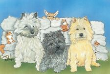 Cairn Terrier Blank Note Card