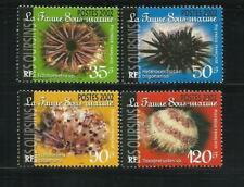 French polynesia. year: 2002. theme: marine fauna.