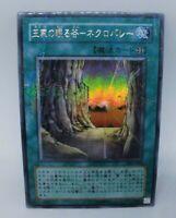 SDMA-EN025 NECROVALLEY 1ST EDITION YUGIOH CARD