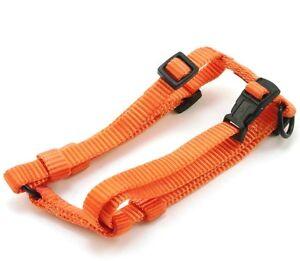 "HAMILTON Adjustable Nylon Comfort Dog Harness, X-Small (3/8"" x 10""-16""), Orange"
