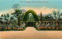 DB Postcard CA D469 The Maze Hotel Del Monte California Flowers Blue Palm ca1900
