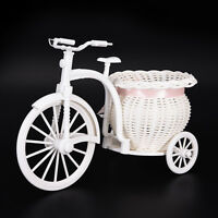 Plastic White Tricycle Bike Design Flower Basket Storage Party Decor 26cm XE