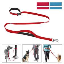 Hands Free Nylon Dog Leash No-Tangle Clip & Padded Handle Puppy Collar Leash
