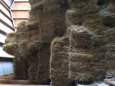 Meadow Hay Small Bales 2018