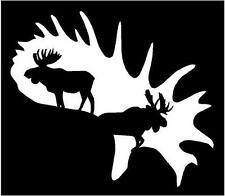 LARGE WHITE Vinyl Decal Moose in Antler horn hunt hunting country truck sticker