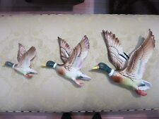 Mallard Flying Ducks