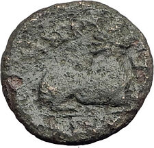 KASSANDER 316BC Pella Macedonia HERCULES LION Original Ancient Greek Coin i62603