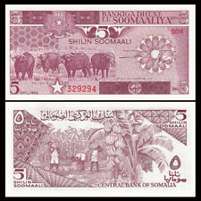 Somalia 5 Shillings, 1986 P-31b, UNC, Africa  Banknotes