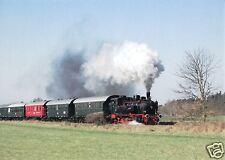 AK, Dampfzug auf der Heidekrautbahn bei Buchhorst, 2.4.2009