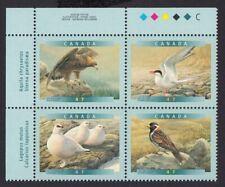 GOLDEN EAGLE, ARCTIC TERN = BIRDS = Canada 2000 #1889a MNH UL PLATE Block of 4