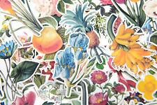 160pc stickers pack botanical Sticker bomb for junk bullet journal scrapbook