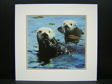 Charles Frace Treasures of the Sea Otter Matted Mini Art Print